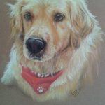 Dog, pastel, painting portrait art