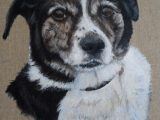 dog art acrylics painting