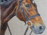 Acrylics, Horse, Natural linen