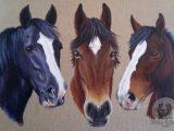 Horses, Acrylics, Commission