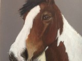 Horse in pastels