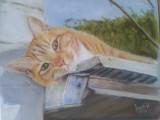 Cat, pastel