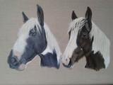 Horse horses acrylics art painting portrait